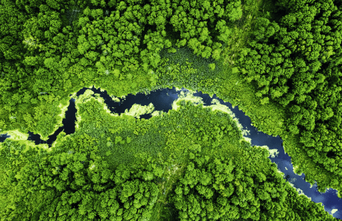 Не вредит окружающей среде